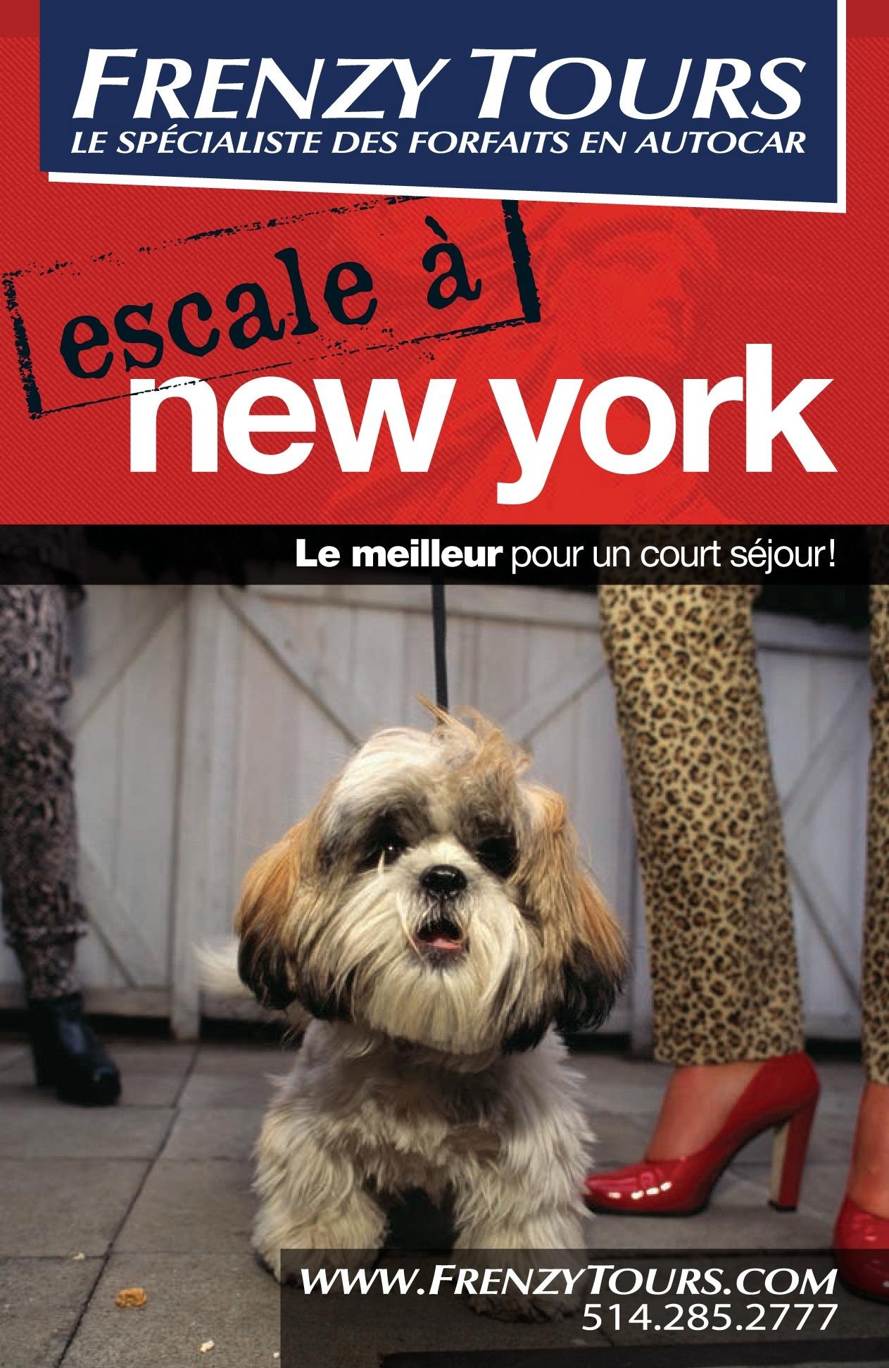meilleur guide pour new york